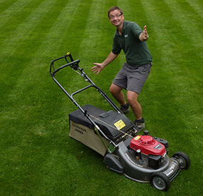Tim looking happy on freshly cut lawn with stripes